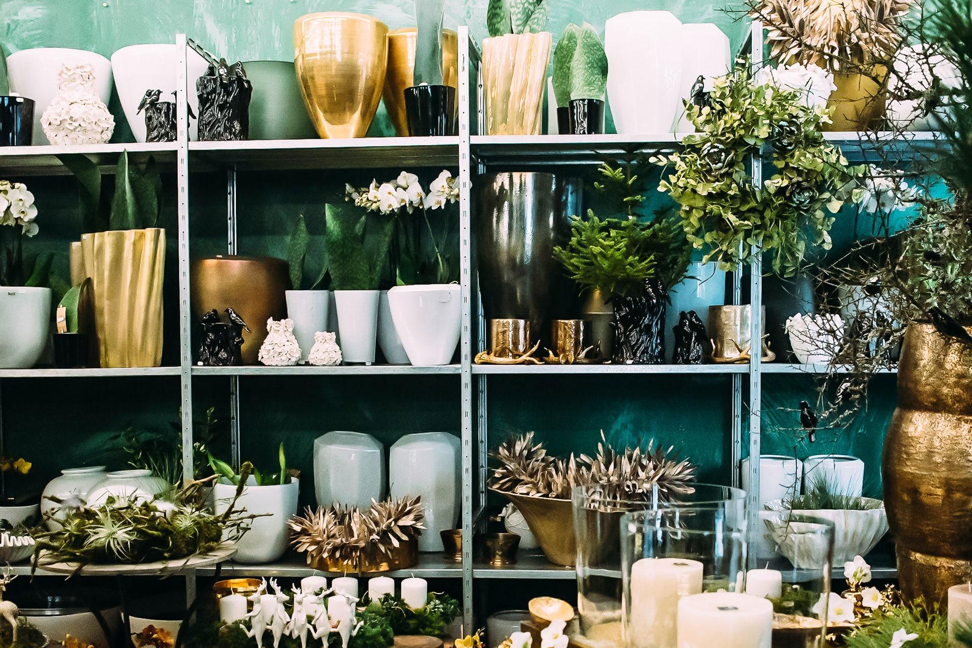 Büropflanzen und Vasen – Innenraumbegrünung