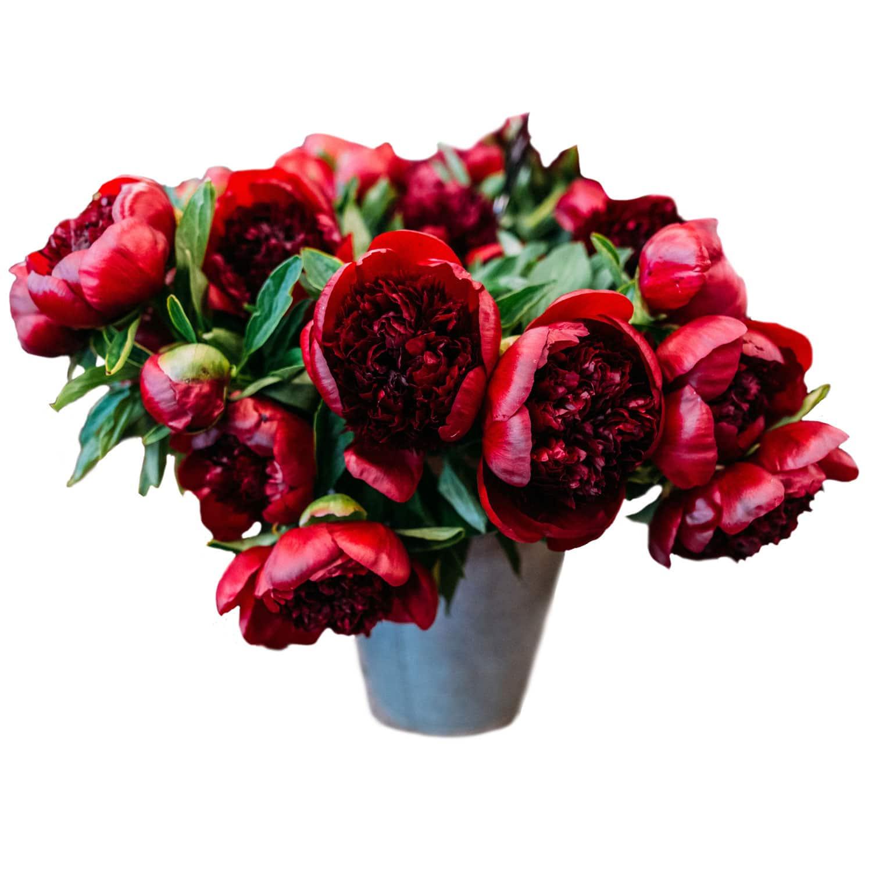 Frühlingsstrauss Blumen