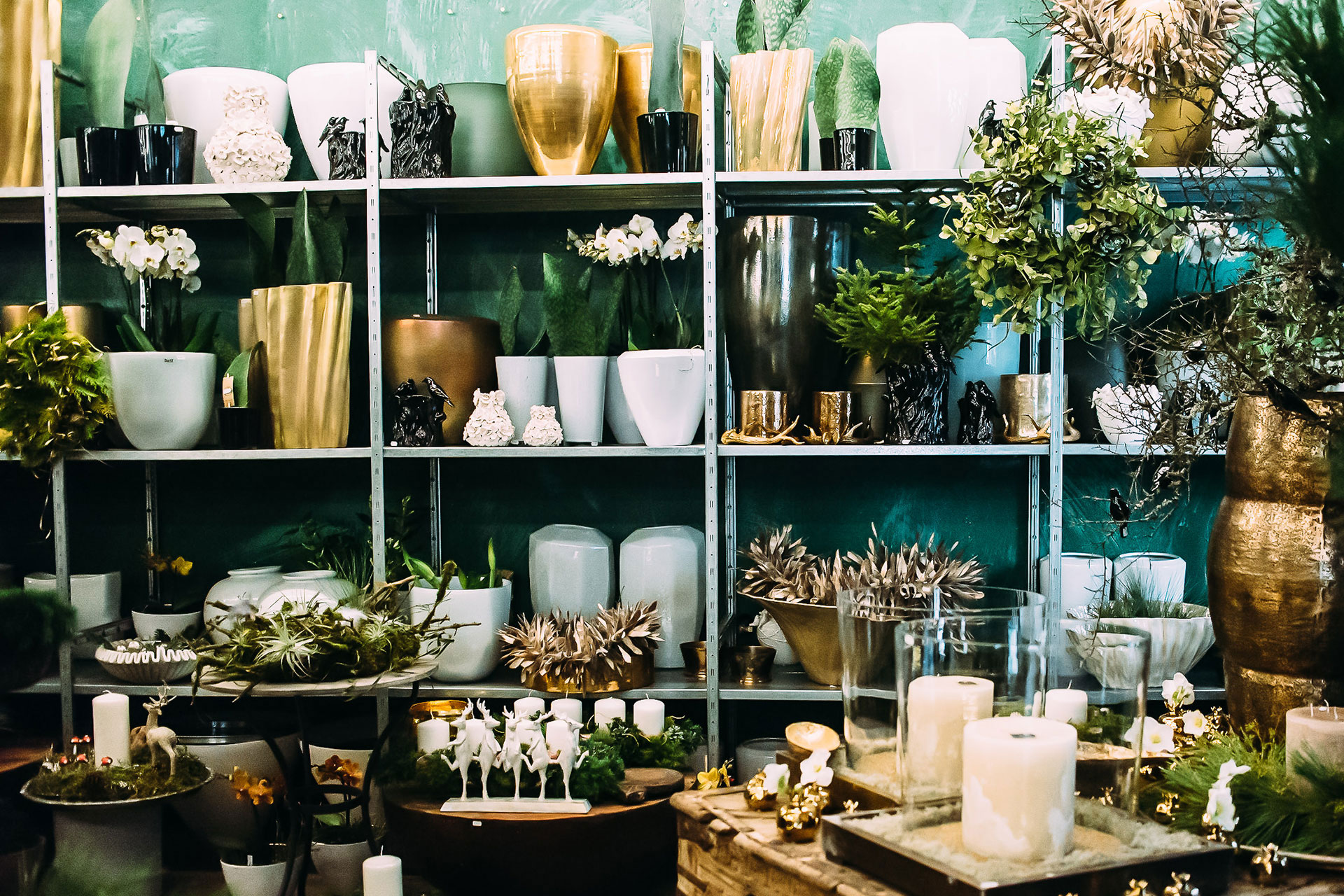 Vasen, Orchideen und weihnachtliche Dekorationen