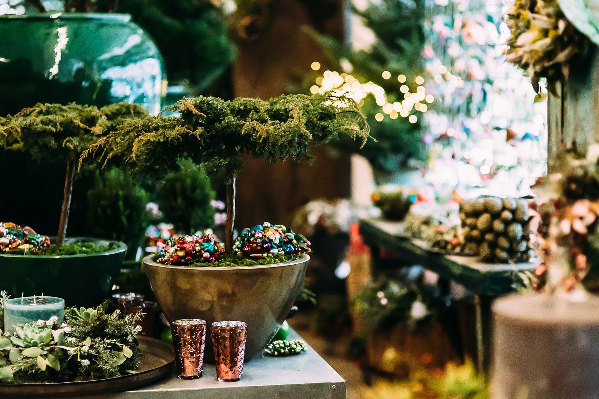 Weihnachtsdeko und Pflanzen