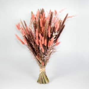 Trockenblumen Puderwiese